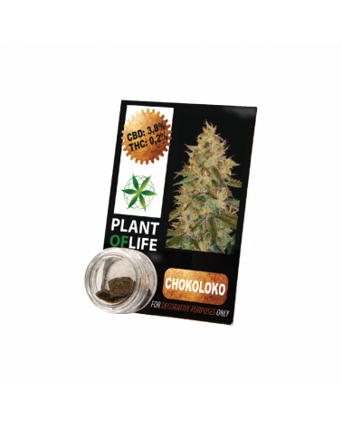 PLANT OF LIFE SOLIDE 1gr